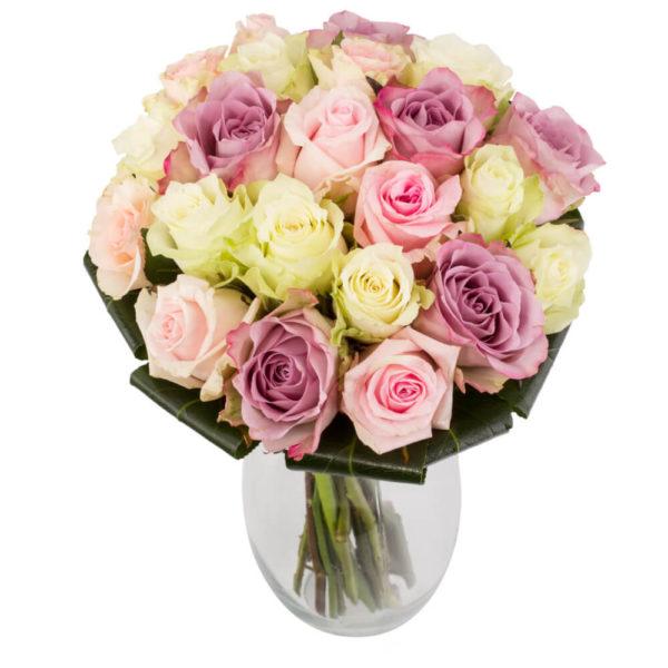 pastelne roosikimp