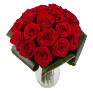 punane roosikimp