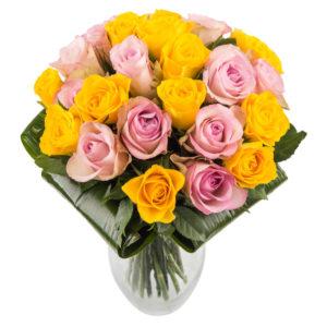 kollaseroosakirju roosikimp